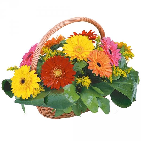 Цветы, доставка цветов в арзамасе круглосуточно
