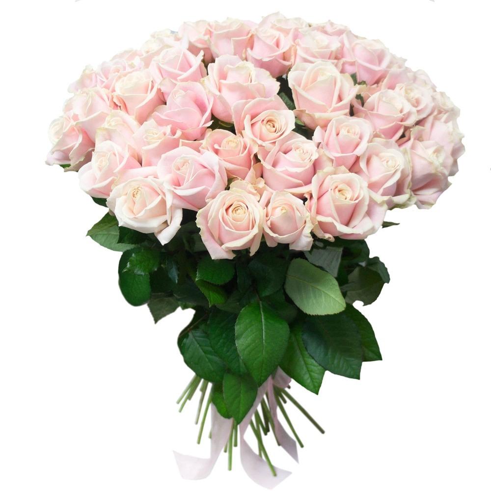 Картинки, роза картинки красивые букеты